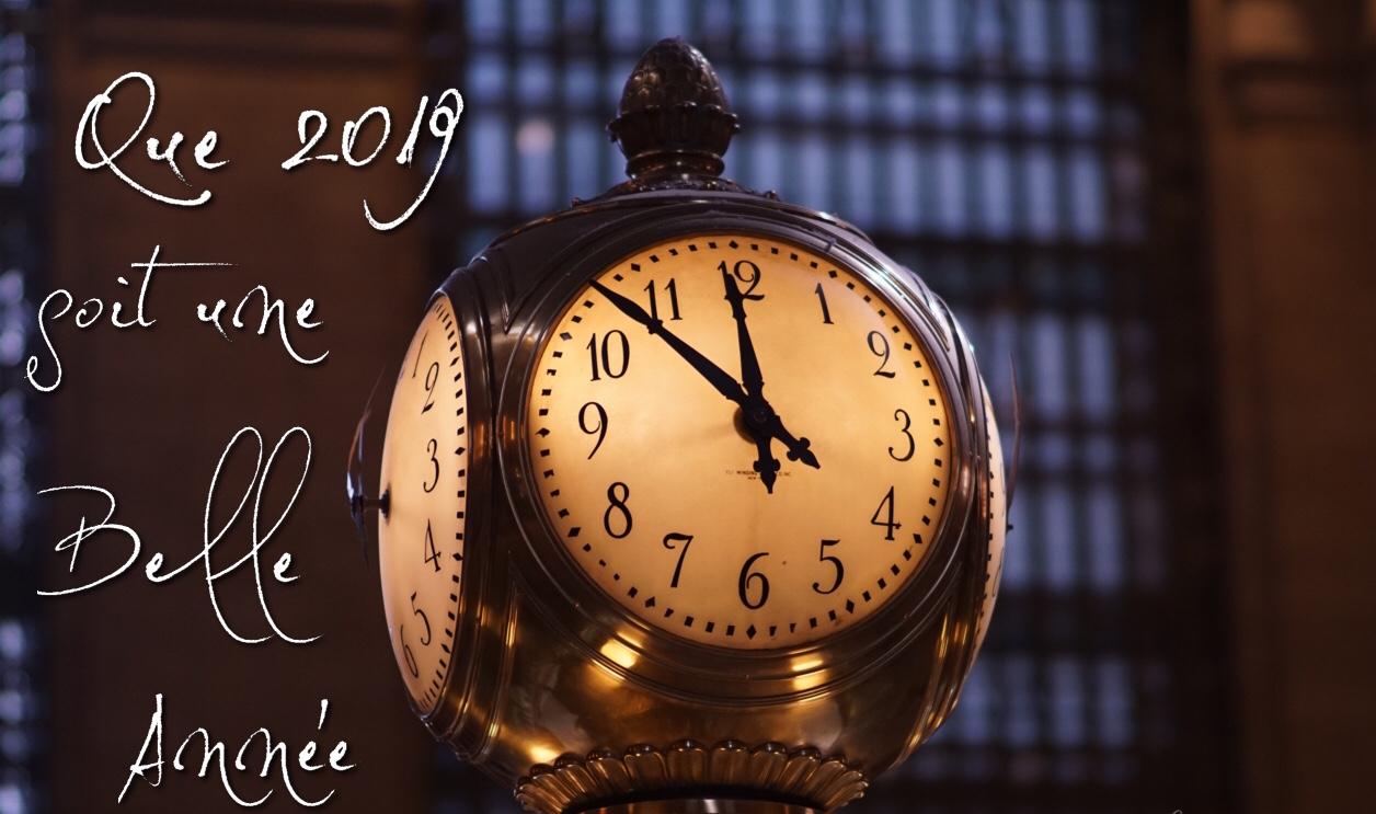Meilleurs Vœux pour cette nouvelle année 2019 🍾🎊